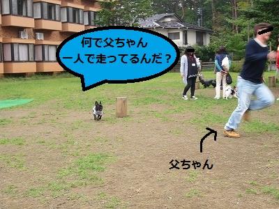 s-20IMG_0741.jpg