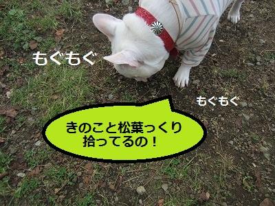 s-20IMG_0766.jpg