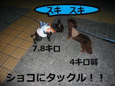 s-23P1090799.jpg