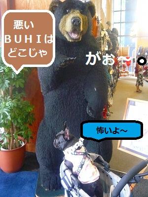 s-24P1100036.jpg
