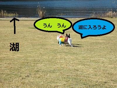 s-25IMG_1734.jpg