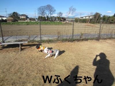 s-25IMG_2359.jpg