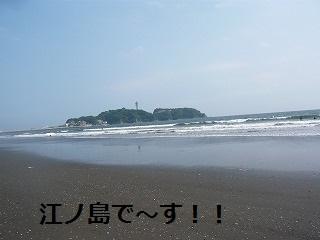 s-5P1070119.jpg