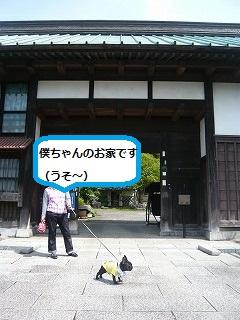 s-P1060519.jpg