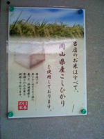 きのみOKOME120314_1231~002