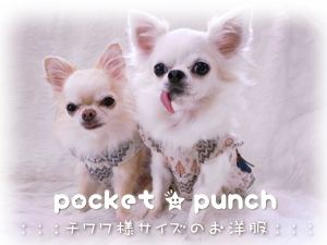 pocket★punchへGO!