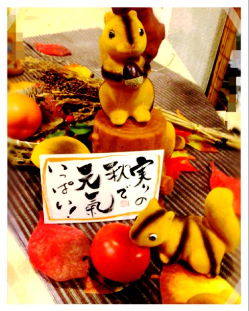 山田屋2014 秋
