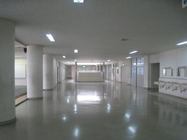 20100424g2.jpg