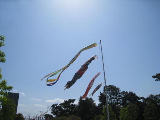 20100429h.jpg