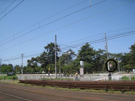20100503s.jpg