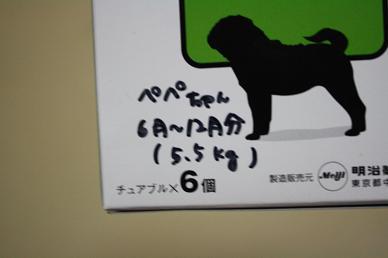 20100602p3.jpg