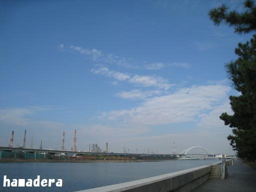 20101122p6.jpg