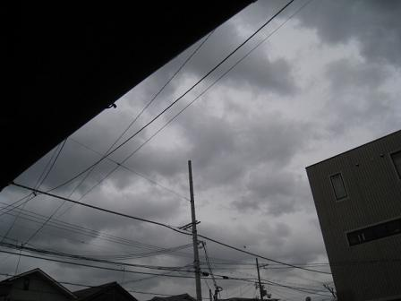 20101231m.jpg