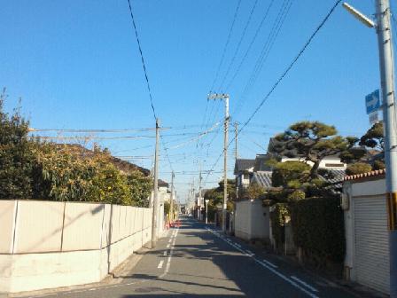 20110112kesi.jpg