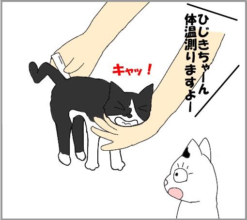 20110810-01.jpg