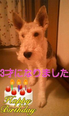 moblog_70da9e2c.jpg