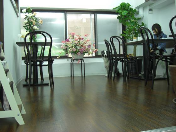 2010-5-13+044_convert_20100514111733.jpg