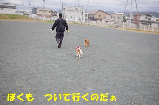 まいきー3