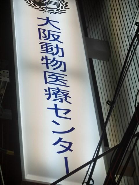 s-CIMG0113.jpg