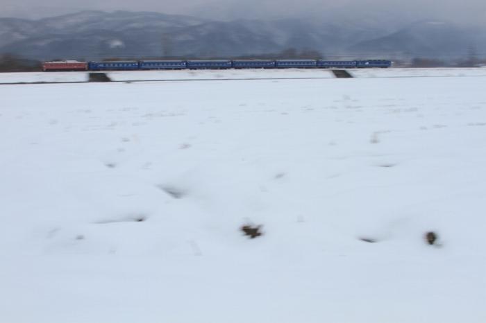 13.01.06 日本海雪原を行く 近江中庄~マキノ