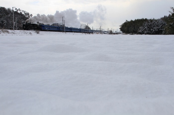 13.01.27 雪原を行く 河毛~高月