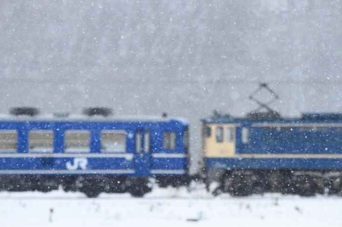 13.01.27 雪舞い散る(PF+12) 虎姫~河毛