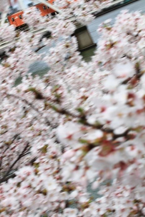 13.04.03 桜の横を走る 103系 天満~桜ノ宮 70-300F4-5.6L