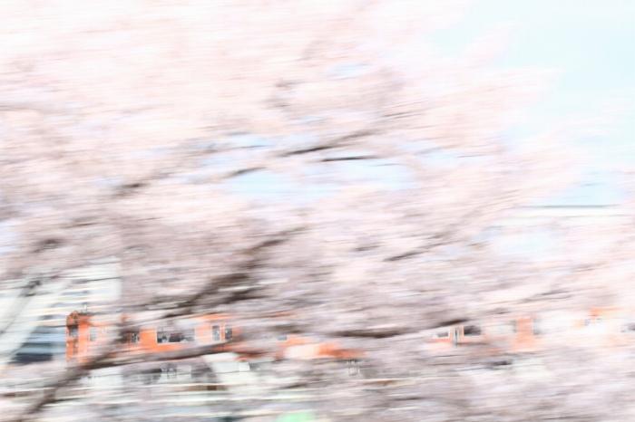 13.04.03 103桜流し 天満~桜ノ宮 70-300F4-5.6L