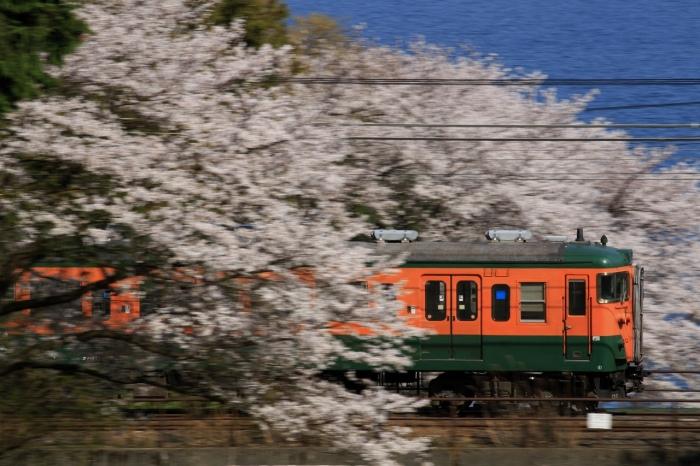 13.04.08 113桜流し 蓬莱~志賀 70-300F4-5.6L