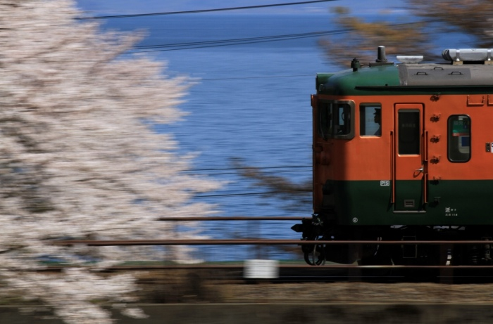 13.04.08 桜と琵琶湖を横目に湘南色走る tr 蓬莱~志賀 70-300F4-5.6L