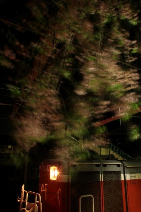 13.04.19 枝垂桜 桃山 17-35F2.8L