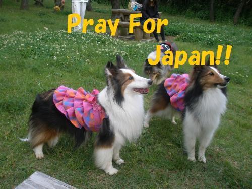 japan2_convert_20110323215456.jpg