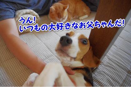 んぱっ 4