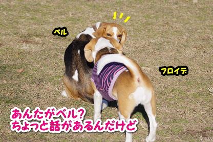 苦悩 14
