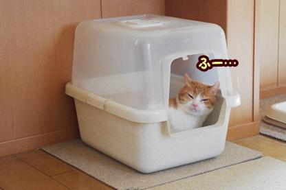トイレ 1