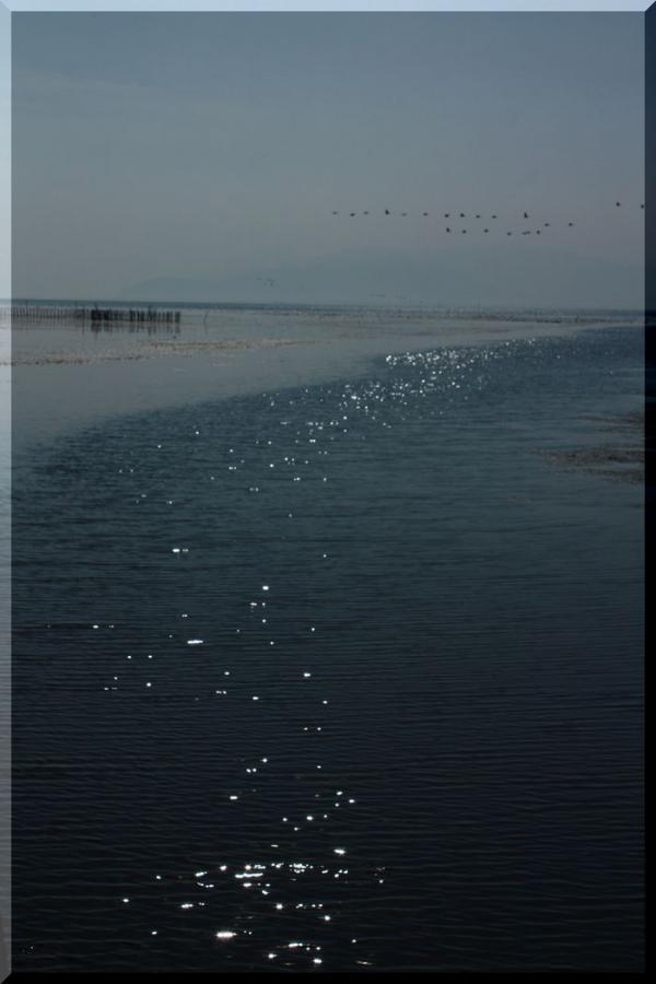 ~ 琵琶湖2