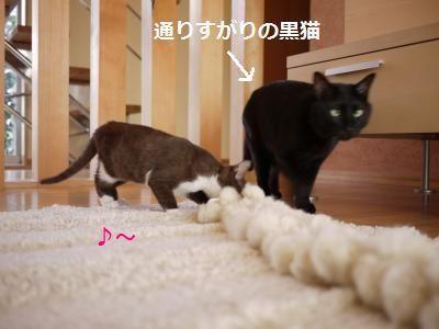 002_convert_20111204004752.jpg
