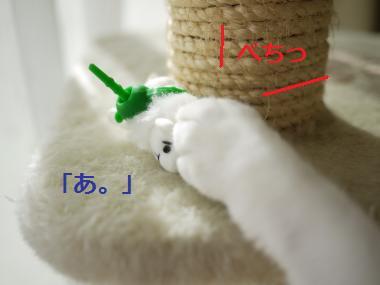 018_convert_20111005163252.jpg