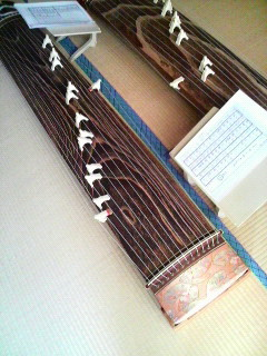 P1005153.jpg