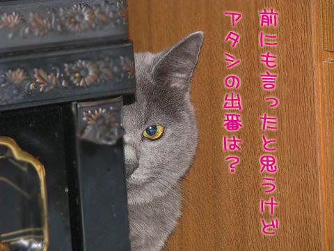 080_Rのコピー