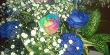 mailレインボー薔薇