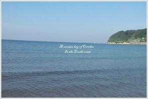 逗子の海6