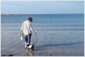 逗子の海 1