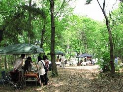 2012春 陽楽ちらし A4