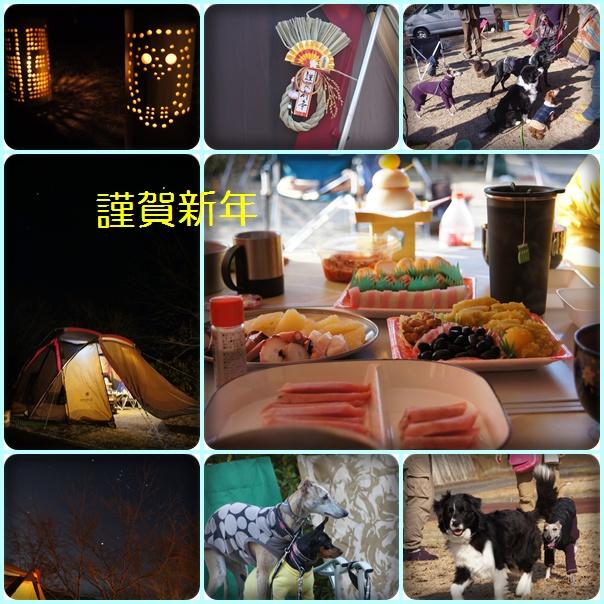 cats_20130102210956.jpg