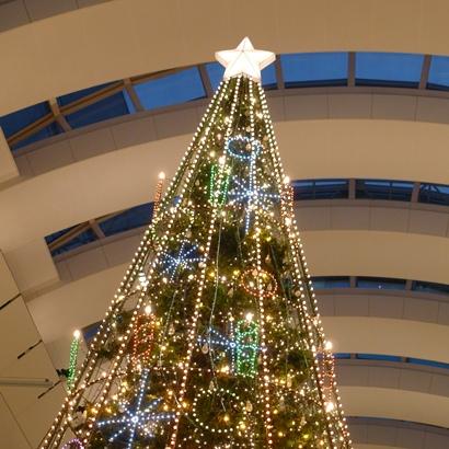 4クリスマスツリー (2)