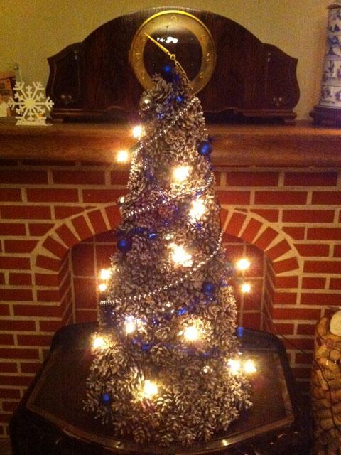 tree pine cone