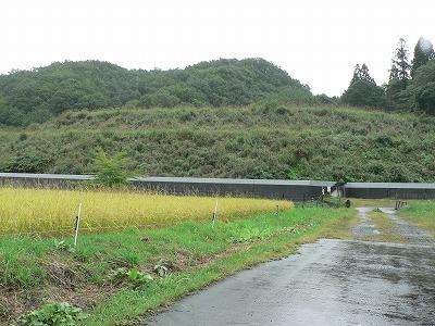 中津河堆積場