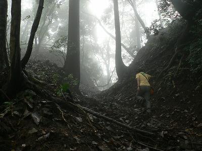賊ヶ岳に登ります