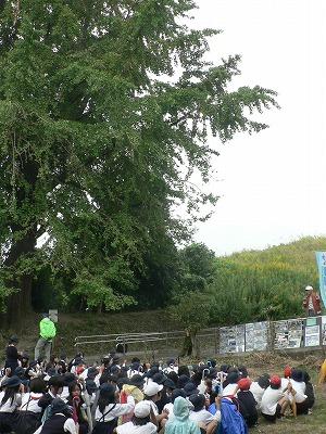 茨田樋遺跡水辺公園で解説